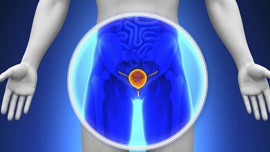 The FDA Has Approved A New Diagnostic Imaging Agent To Detect Recurrent Prostate Cancer