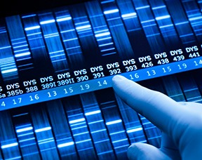 Prostate Cancer Genetic Tests are Misinterpreted by Men Thumbnail
