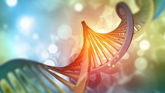 Genetic Screening Helps Identify Immunotherapy Treatment Options