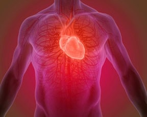 More Evidence Emerges Regarding Cardiovascular Risks Of Hormone Therapy Thumbnail