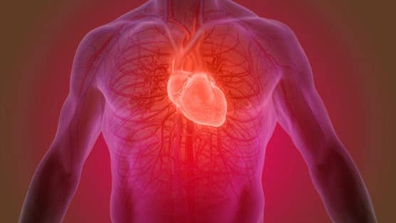 More Evidence Emerges Regarding Cardiovascular Risks Of Hormone Therapy